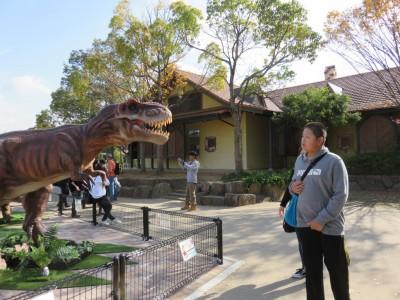 8しゅんちゃんは、恐竜とにらめっこです