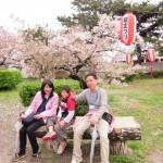 和歌山城で花見