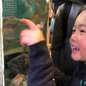 県立自然博物館に行きました(^▽^)/